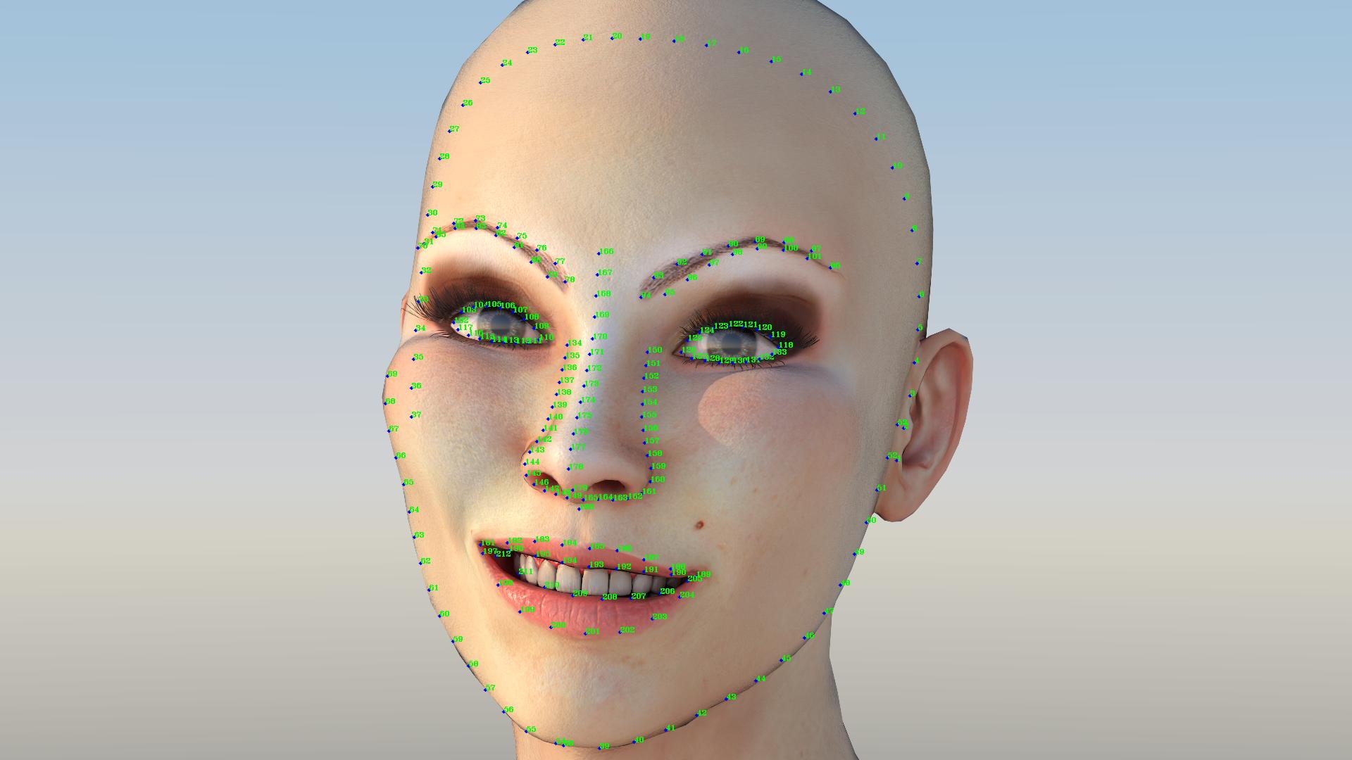 face landmarks